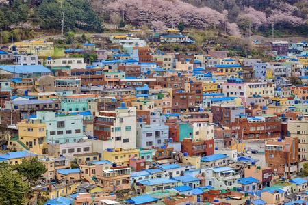 Gamcheon Culture Village, Busan, Corea del Sud.