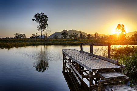 tree  forest: Serene Sunrise over fishing Jetty , hong kong Nam Sang Wai Stock Photo