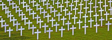 White crosses in a cemetery photo
