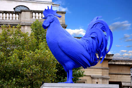 fibreglass: LONDON, UK - 17 AUG  Hahn Cock a sculpture of a giant blue cockerel by the German artist Katharina Fritsch in Trafalgar Square London, Uk on 17 August 2013