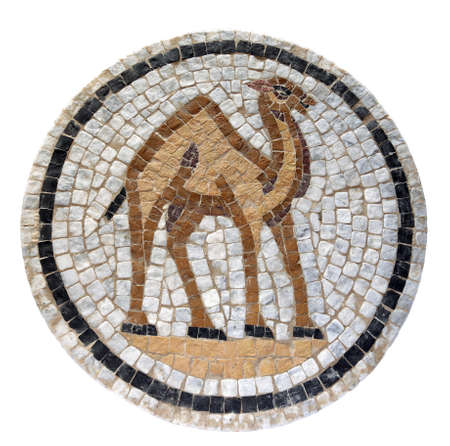 mosaic: Ancient mid 3rd century Roman mosaic depicting a desert camel