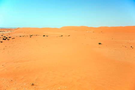 Saudi desert scene near Riyadh