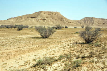 Dry Saudi desert scene near Riyadh 版權商用圖片