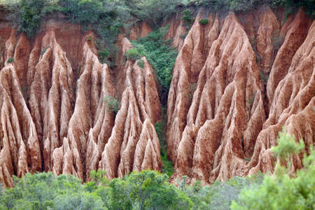 Example of extreme soil erosion