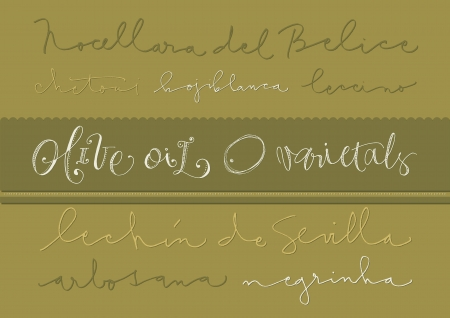 res: Hand-drawn olive oil varieties text and illustrations  EPS vector file  Hi res JPEG included  Illustration
