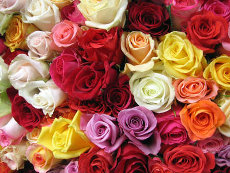 Multicolored Roses in Paris Market. photo