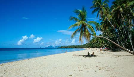 isla del tesoro: West Indies francés, Martinica