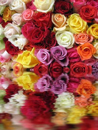 Multicolored Roses in Paris Market. photo