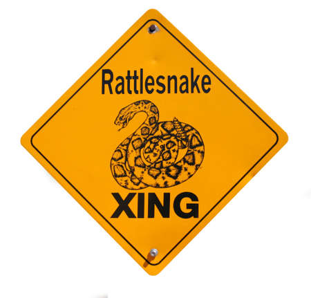 Rattlesnake Crossing Warning Snake isolated on white background photo