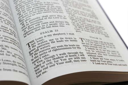 salmo: Salmo 23 Il Signore � il mio pastore