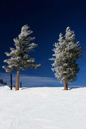 wintriness: Fresh snow in the Sierras Stock Photo
