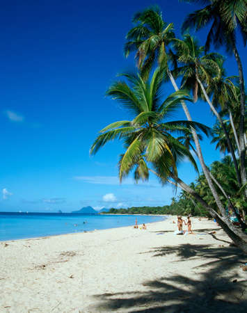 indies: West French Indies, Martinique. Stock Photo