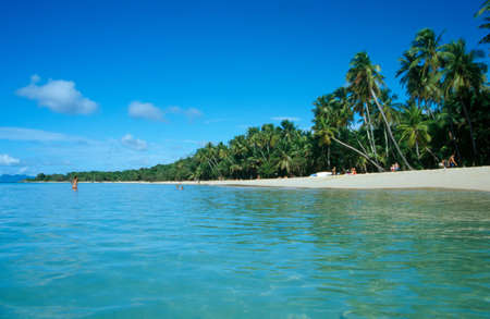 martinique: West Indies franc�s, Martinica