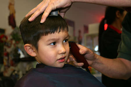 Little boy getting haircut