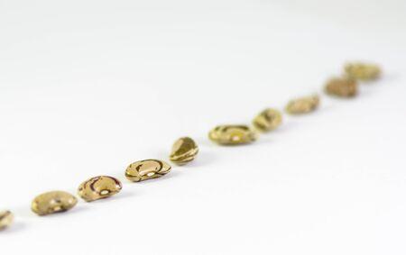 una línea diagonal de frijoles de la aldea de Smollian. Los granos están aislados en un fondo blanco Foto de archivo
