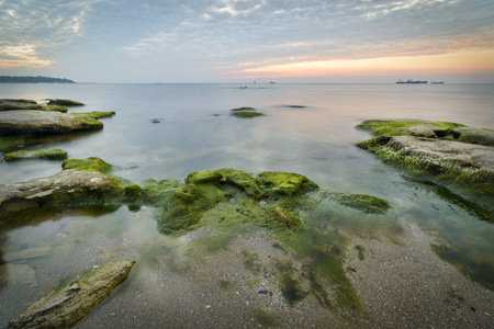 Rocks with seaweeds as sunrise against a vibrant yellow and orange cloudy sky Stock Photo