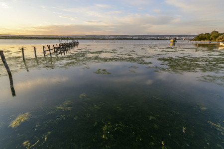poles with fishing net on a lake, at sunset