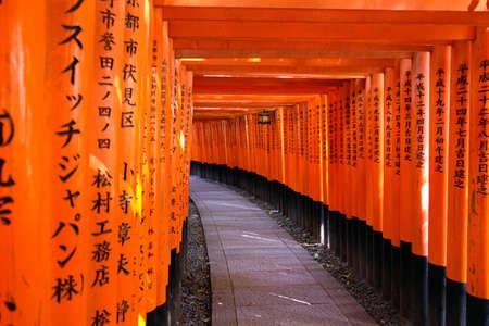 laquered: Orange laquered Torii gates at Fushimi Inari Taisha shrine in Kyoto, Japan