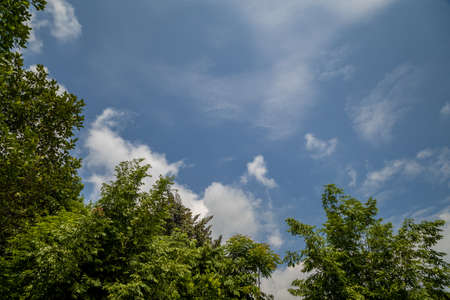 Sunny blue sky with soft clouds and bright sun against green trees foreground