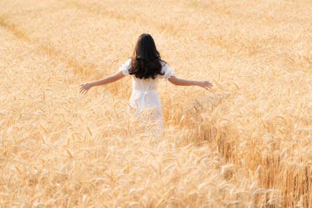 Back view of young long hair woman in white dress waling alone in the golden color barley field, room for copy space