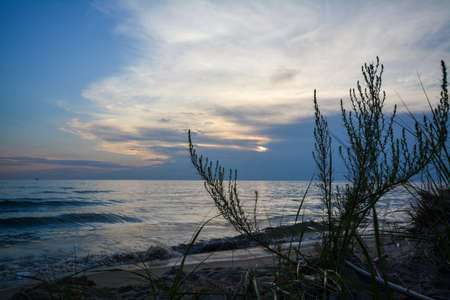 Beach grasses are shown in silhouette with a Lake Michigan sunset in the background. Muskegon State Park, Michigan