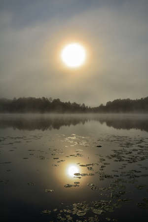 Reflection of sun in a lake during a foggy sunrise