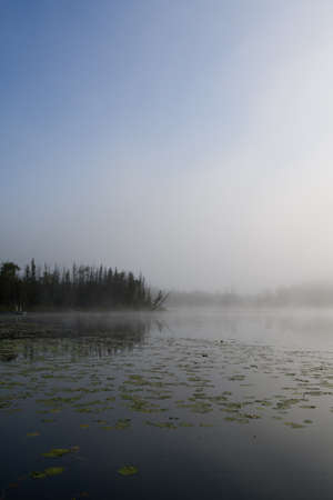 Early morning with fog over a small lake