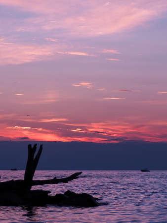 pink sunset over Lake Michigan with silouhette of rocks and driftwood Standard-Bild