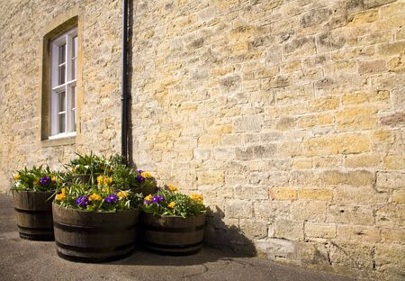 Tubs of purple and yellow flowers stood by a stone wall of a house