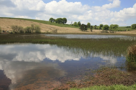 somerset: Priddy Pond,Somerset UK  Priddy is a village in Somerset, England in the Mendip Hills, close to the city of Wells  The village lies near the summit of the Mendip hills, It is the venue for the annual Folk Festival and Sheep Fair