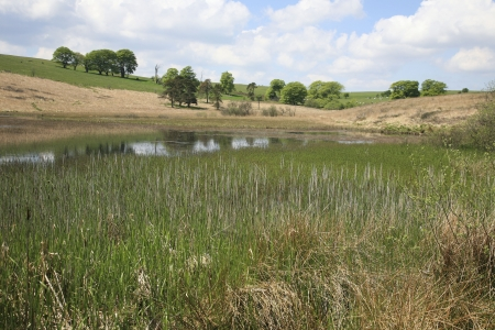 Priddy Pond near Cheddar, Somerset UK   Priddy is a village in Somerset, England in the Mendip Hills, close to the city of Wells  The village lies near the summit of the Mendip hills  Stock Photo
