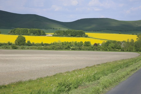 wiltshire: Wiltshire countryside UK