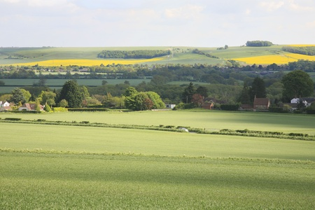 Countryside near Devizes in Wiltshire UK  photo