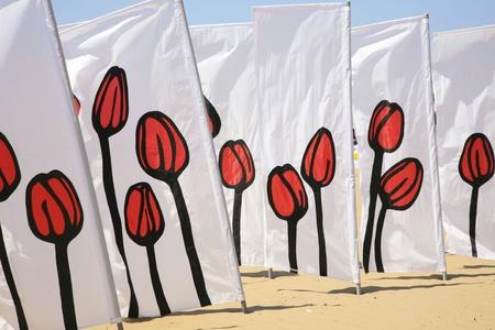 Tulip estampadas rompevientos Foto de archivo