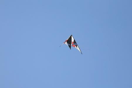 steep holm: Kite flying high