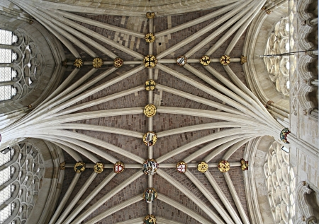 glass ceiling: Detailed ceiling in Exeter cathedral