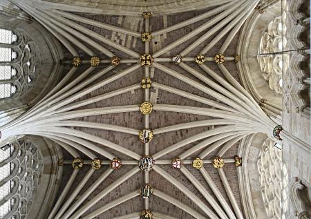 Techo detallada en la catedral de Exeter