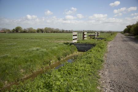 Una visi�n a trav�s de un campo en los niveles de Somerset en Somerset, Reino Unido Foto de archivo