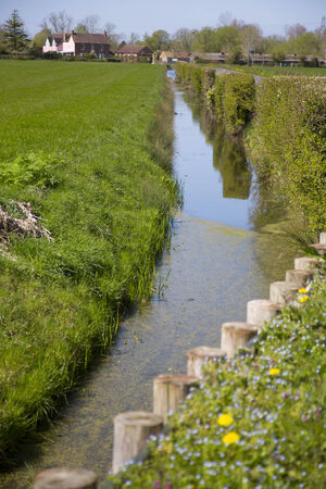 A view of a Somerset rhyne with a line of wooden post barriers protecting the bank from damage Stock Photo