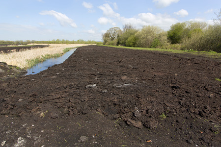 county somerset: Peat extraction in a field on the Somerset Levels in the county of Somerset in the west of the UK