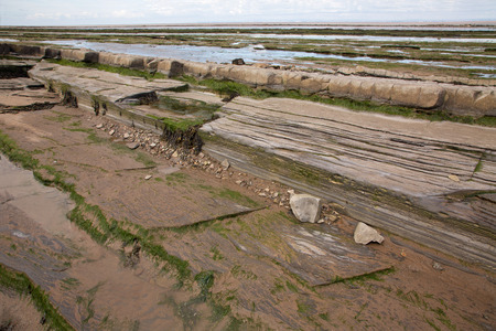 triassic: Doniford Bay consists of the Lower Jurassic Lias, and Triassic beds.The Jurassic lias at Doniford are the youngest of the lias at Somerset and marks the uppermost beds of the Lower lias. Horizons of the Doniford Shales can be located and at low tide, nea
