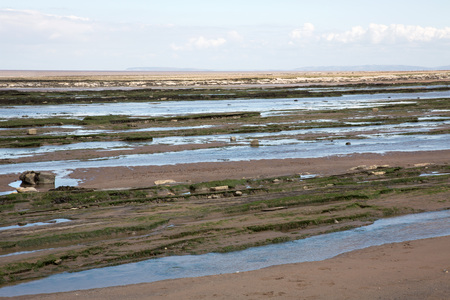 Doniford Bay consists of the Lower Jurassic Lias, and Triassic beds.The Jurassic lias at Doniford are the youngest of the lias at Somerset and marks the uppermost beds of the Lower lias. Horizons of the Doniford Shales can be located and at low tide, nea