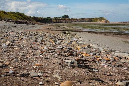 Doniford Bay consiste en el Jur�sico Inferior Lias y Tri�sico beds.The lias Jur�sico en Doniford son el m�s joven de los lias de Somerset y marca las camas superiores de los lias bajos. Horizontes de la Doniford Shale de pueden ser localizados y con la marea baja, nea