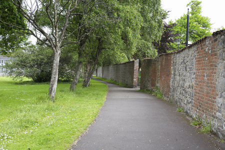 A tree lined pathway in a park