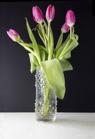 A bunch of pink tulips in a vase against a black background Stock Photo