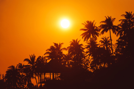 untouched: Warm sunset on tropical beach with palm trees silhouettes. Thailand Stock Photo