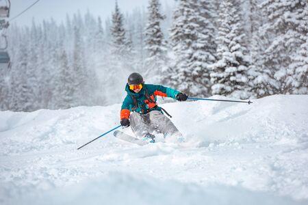 Freeride skier rides over off-piste slope in snow capped forest Standard-Bild