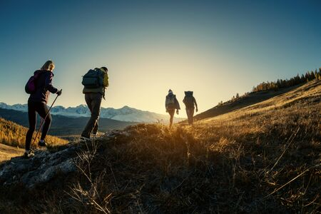 Group of young hikers walks in mountains at sunset time