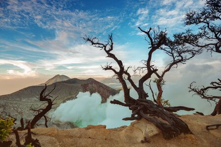 volcano crater with acid lake and dead trees at sunrise. Java island, Indonesia 免版税图像