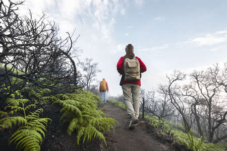 Two tourists with backpacks walks at volcano top in acid clouds and dead trees